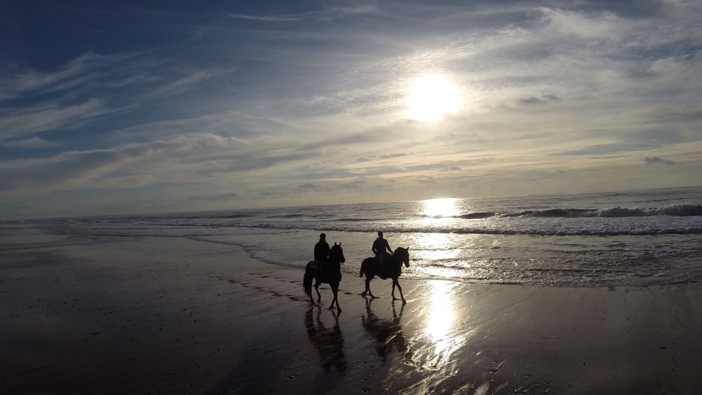 #turismotodoelaño Provincia de Cádiz, Turismo todo el año
