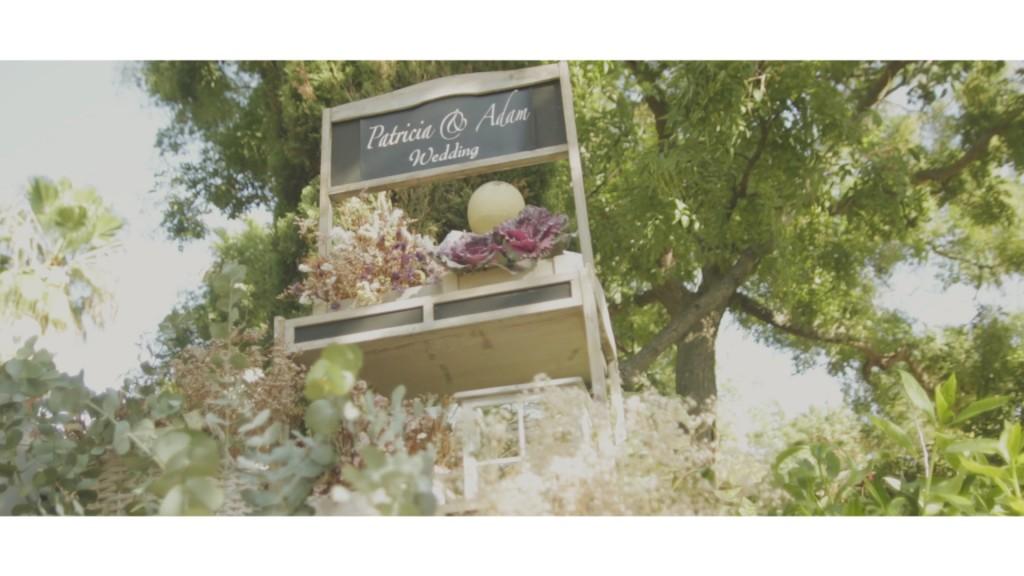 Wedding Vídeo in Cádiz - Aerial Same Day Edit