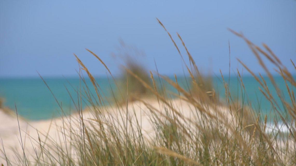 playa-de-camposoto-san-fernando-cadiz1