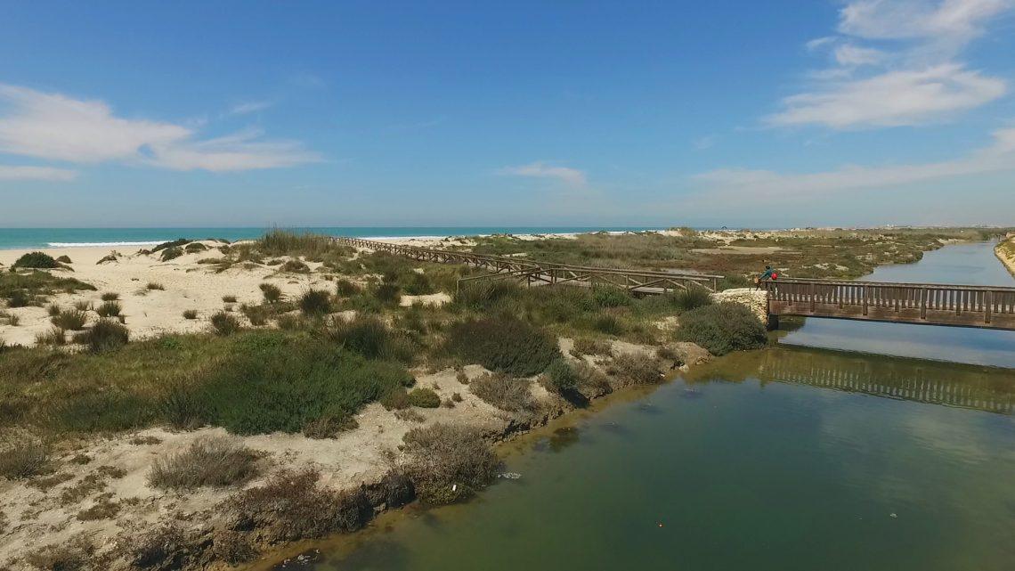 playa-de-camposoto-san-fernando-cadiz3