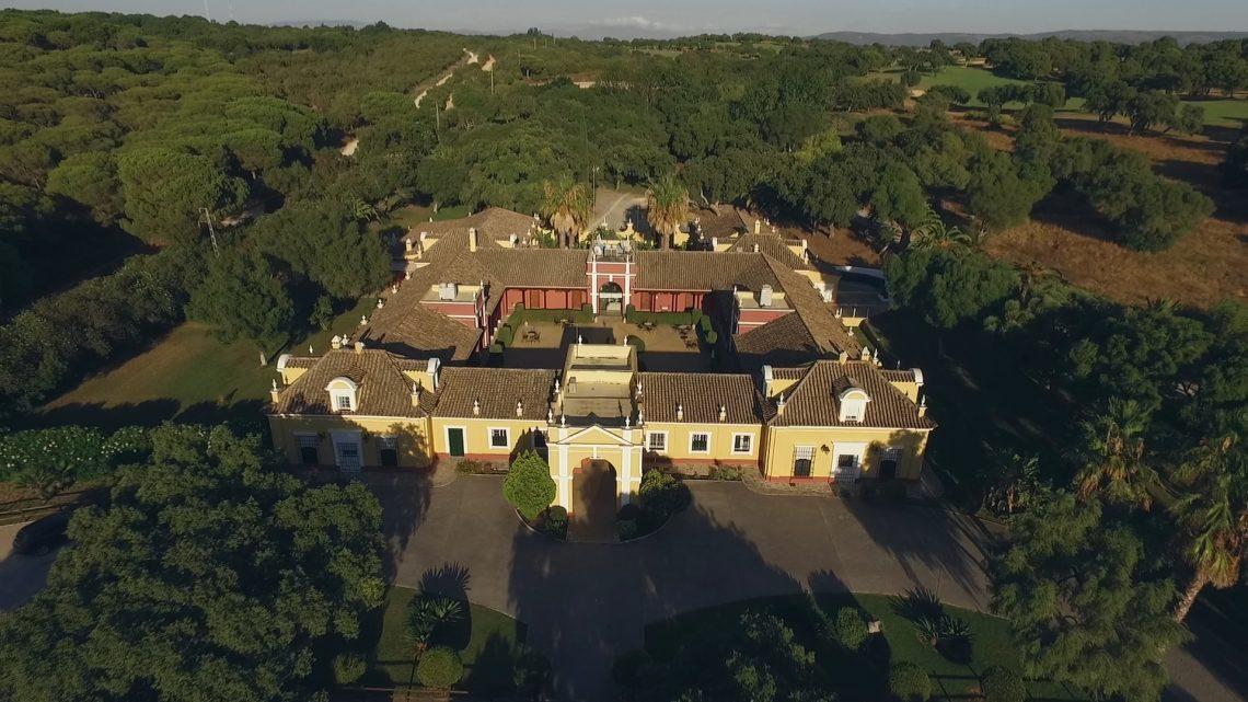 foto-video-de-boda-en-hacienda-montenmedio-vejer-cadiz-6