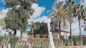 video-de-boda-en-hacienda-la-pintada-sevilla-19