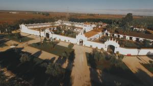 video-de-boda-en-hacienda-la-pintada-sevilla-2