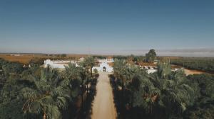 video-de-boda-en-hacienda-la-pintada-sevilla-41