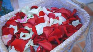video-de-boda-en-bodegas-real-tesoro-jerez-lebrjia-foto5
