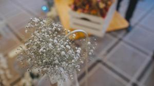boda-en-hotel-royal-hideaway-sancti-petri-chiclana-29