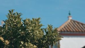 video-de-boda-en-fuente-de-plata-santa-luisa-lebrija4